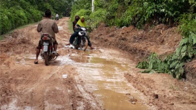 Photo of Jalan Penghubung Desa Pulau Raman, Kaos, dan Olak Rambahan Rusak Parah