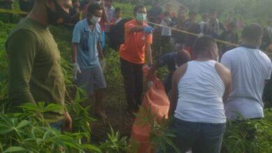 Photo of Lampung Utara Geger. Mayat Dokter Wanita Di Temukan Di Kebun Singkong Warga