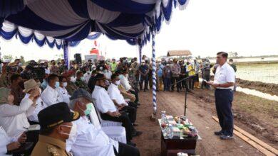 Photo of Infrastruktur Dibenahi, Dukung Food Estate Yang Akan Diperkuat